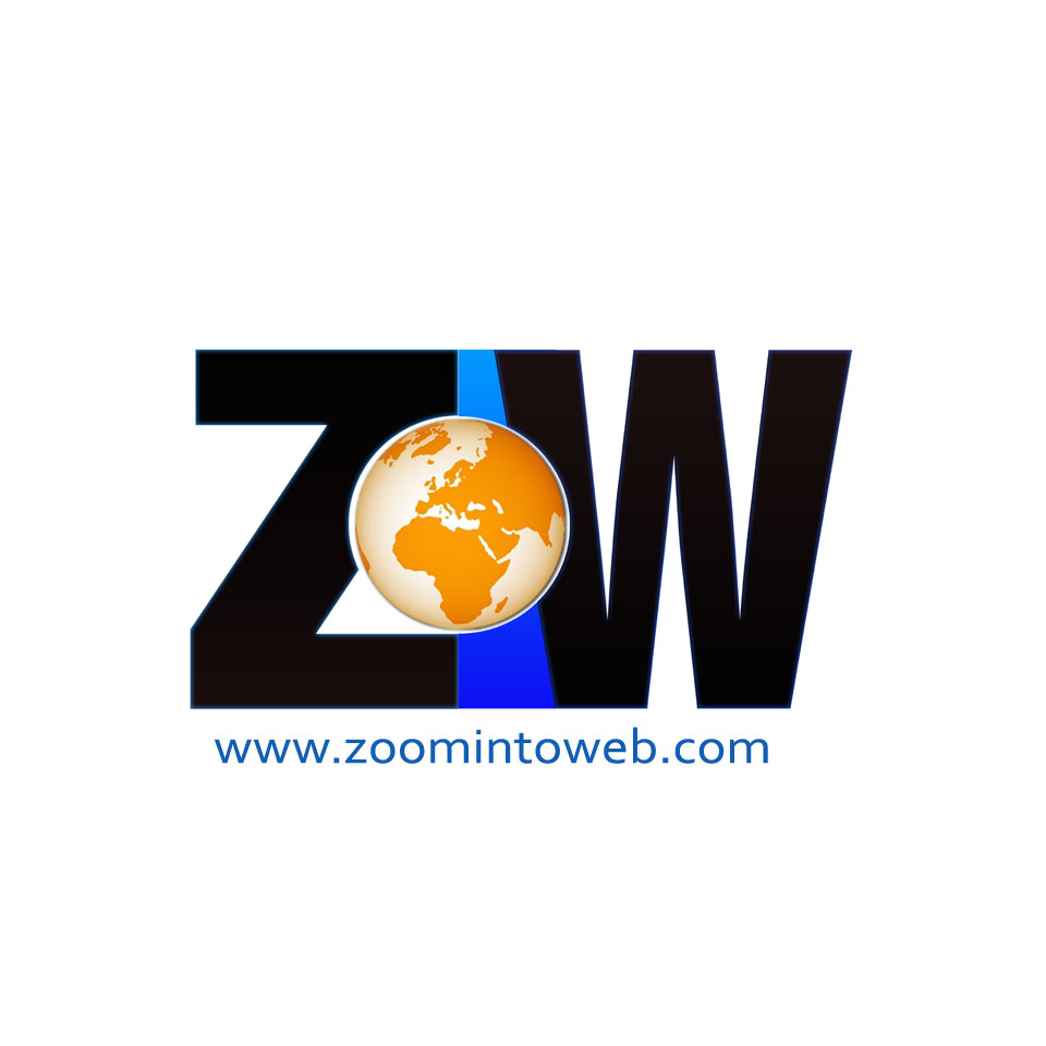 Zoom Into Web Internet Marketing Delhi Website Designing About Us
